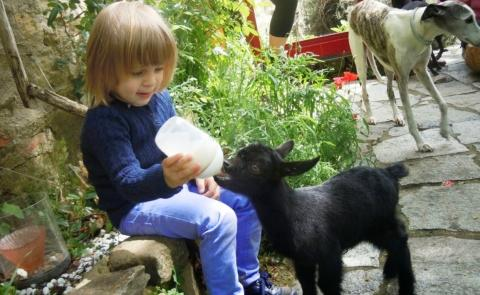 Agriturismo met kinderboerderij, manege, olijfgaarden | Tritt.nl