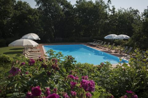 Zwembad in een oase van groen