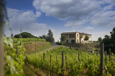 Luxe villa met privé zwembad op wijnlandgoed
