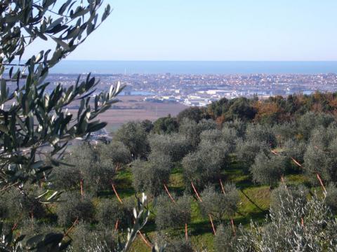 Vrijstaand vakantiehuis Toscane kust