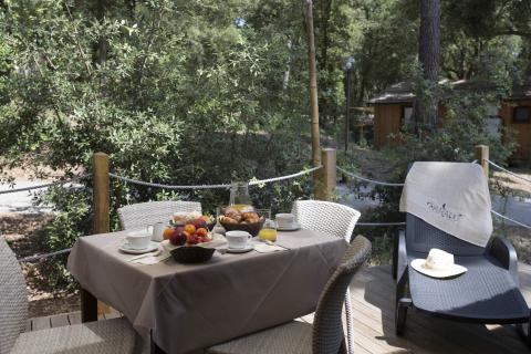 Log cabins in het pijnbomenbos