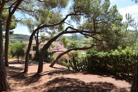 Familieparkje vakantie Elba in het pijnbomenbos |Tritt.nl