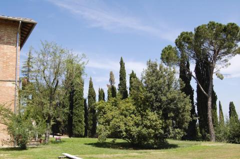 Villa met omheinde tuin