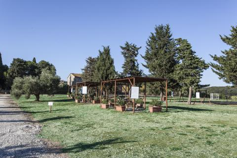 Bio Ferienwohnungen mit Jacuzzi und Bio Pool