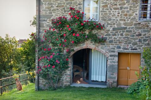 Wunderschöne Villa in Panoramalage für 12 Personen, nördlich von Lucca, Tritt-Toskana.de