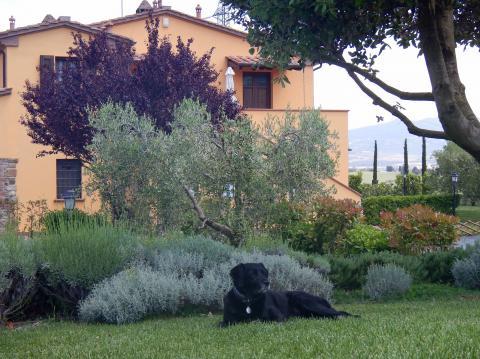 Agriturismo Toscane met zwembad