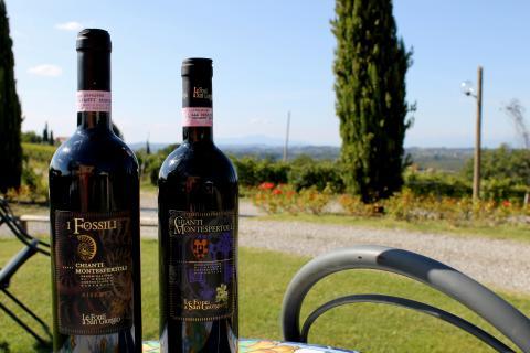 Olivenöl der Agriturismo