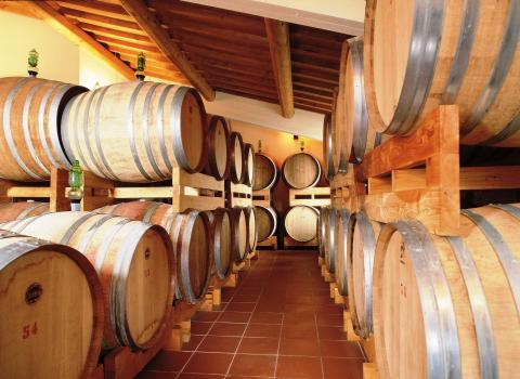 Mooie agriturismo op wijnlandgoed in de Chianti | Tritt.nl