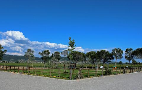 Agriturismo Cortona Toscane