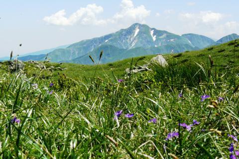 Monte Bocco: Prachtig Toscane voor een fietsvakantie / wandelvakantie Italië.