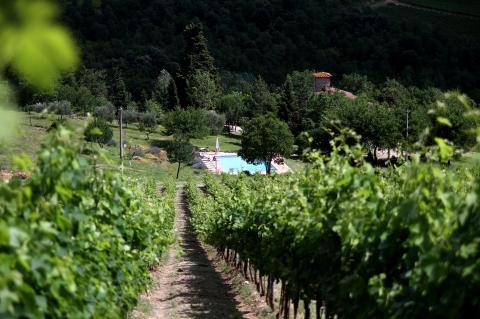 Agriturismo met wijngaard Toscane