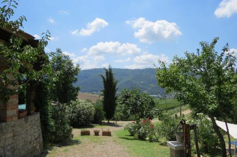 Agriturismo met appartementen vlakbij Florence | Tritt.nl