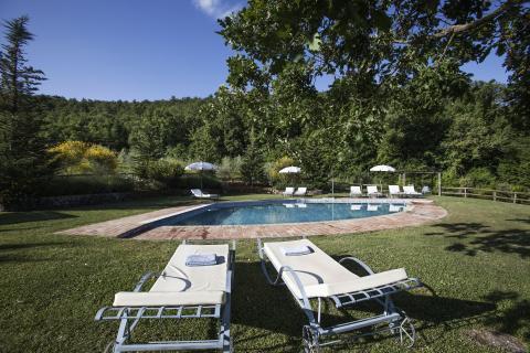 Heerlijke ruime tuin rondom het zwembad