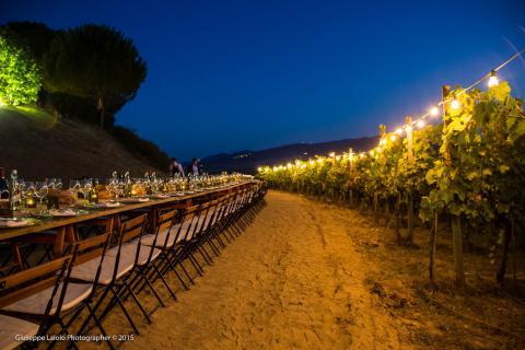 Appartementen Toscane wijngaard