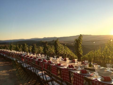 Appartementen wijngaard Toscane