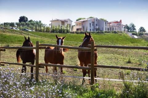 Vakantiewoningen met manege en zwembad in Toscane