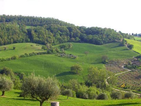 Panoramisch gelegen vakantiehuis Siena