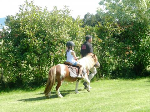Paardrijden met de animatieclub