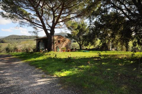 Voordelig geprijsd vakantiehuisje Toscane
