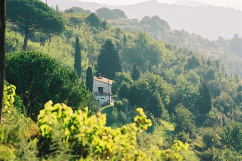 Wetenswaardigheden over Toscane