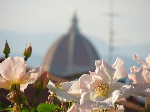 Florence tips - plekken om tot rust te komen