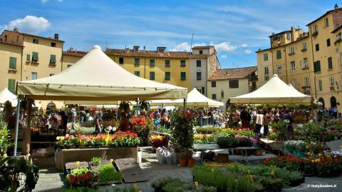 Blumen für die Heilige Zita in Lucca, Toskana