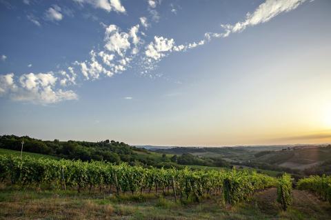Toscane in september: 5 redenen!