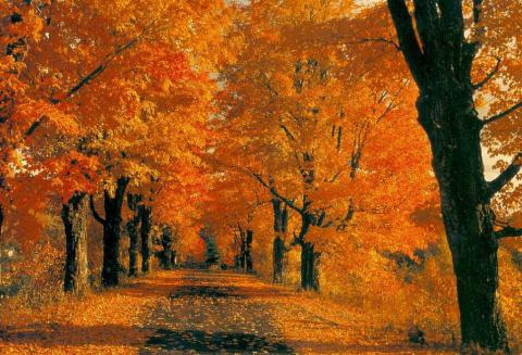 Toskana Natur-Urlaub im Oktober