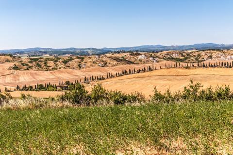 Serieus wandelen in Toscane: Deel 1 van de pelgrimsroute Via Lauretana van Siena naar Cortona
