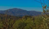 Reis mee met Tritt door de heuvels achter de Toscaanse kust