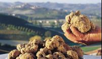 Het paddenstoelenseizoen is geopend in Toscane!