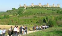 Op zoek naar geschiedenis langs de Via Francigena